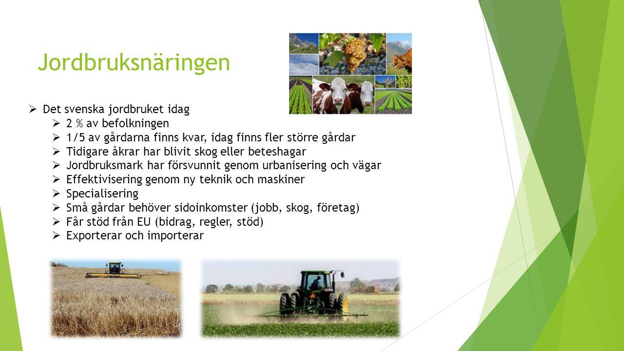 Jordbruksnäringen  Det svenska jordbruket idag  2 % av befolkningen  1/5 av gårdarna finns kvar, idag finns fler större gårdar  Tidigare åkrar har blivit skog eller beteshagar  Jordbruksmark har försvunnit genom urbanisering och vägar  Effektivisering genom ny teknik och maskiner  Specialisering  Små gårdar behöver sidoinkomster (jobb, skog, företag)  Får stöd från EU (bidrag, regler, stöd)  Exporterar och importerar