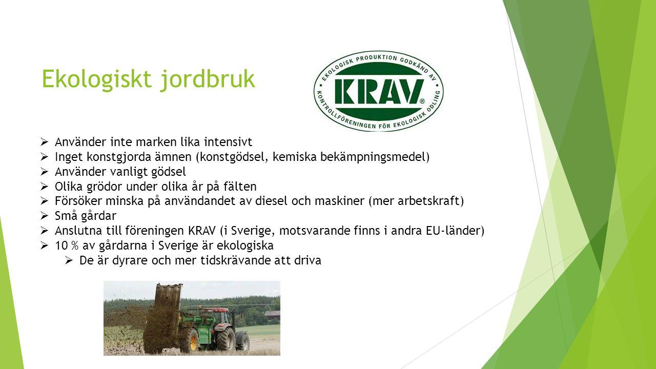 Ekologiskt jordbruk  Använder inte marken lika intensivt  Inget konstgjorda ämnen (konstgödsel, kemiska bekämpningsmedel)  Använder vanligt gödsel  Olika grödor under olika år på fälten  Försöker minska på användandet av diesel och maskiner (mer arbetskraft)  Små gårdar  Anslutna till föreningen KRAV (i Sverige, motsvarande finns i andra EU-länder)  10 % av gårdarna i Sverige är ekologiska  De är dyrare och mer tidskrävande att driva