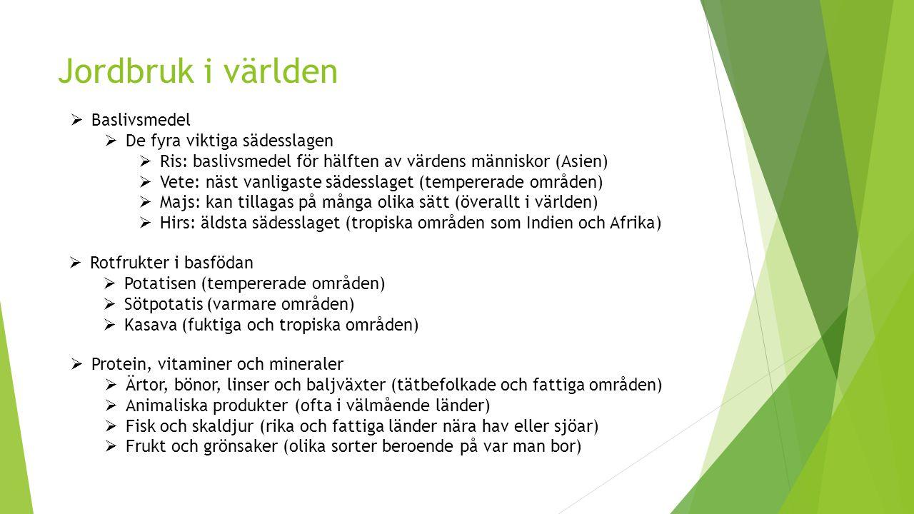 Skogsnäringen  Skogen skapar en skogsindustri  Bränsle som inte ger någon koldioxid  Energiskog som används till bränsle i fjärrvärmeverk  Sågverk som sågar timmer  Papperstillverkning (papper, förpackningar, tidningar)  Sverige exporterar skog till andra länder  Sverige importerar även skog, främst i form av färdiga prudukter