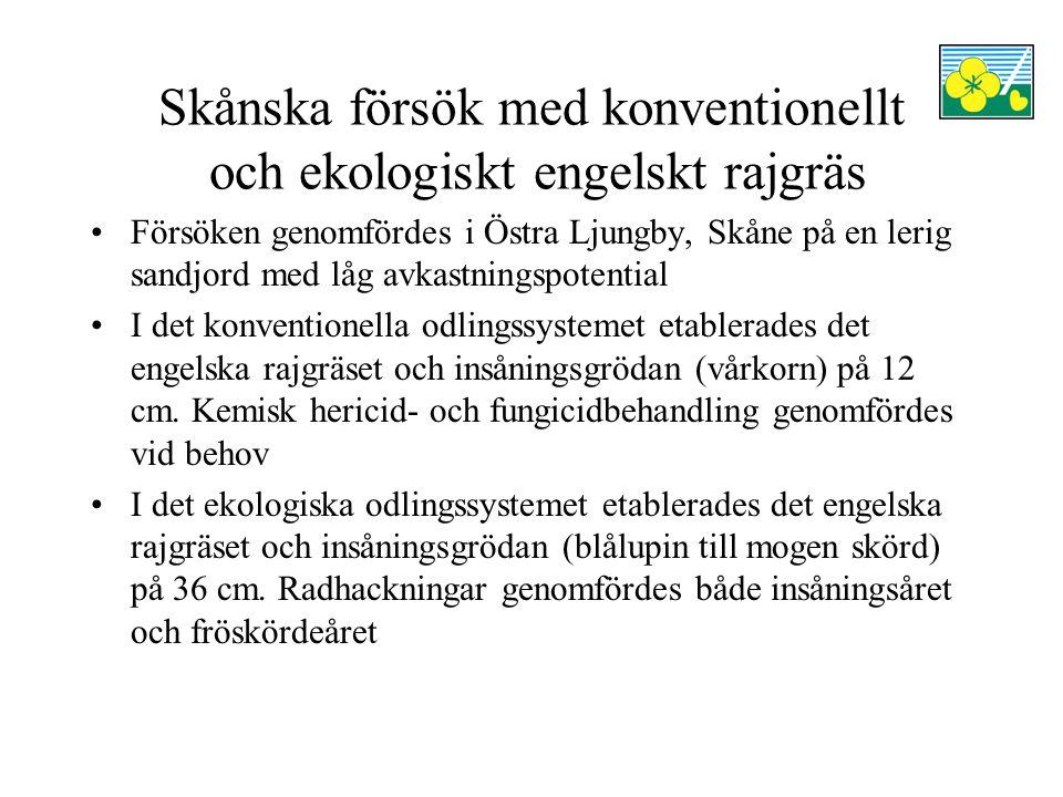 Skånska försök med konventionellt och ekologiskt engelskt rajgräs Försöken genomfördes i Östra Ljungby, Skåne på en lerig sandjord med låg avkastningspotential I det konventionella odlingssystemet etablerades det engelska rajgräset och insåningsgrödan (vårkorn) på 12 cm.