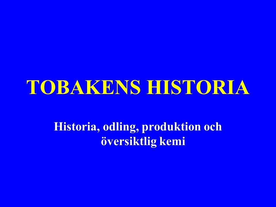 TOBAKENS HISTORIA Historia, odling, produktion och översiktlig kemi