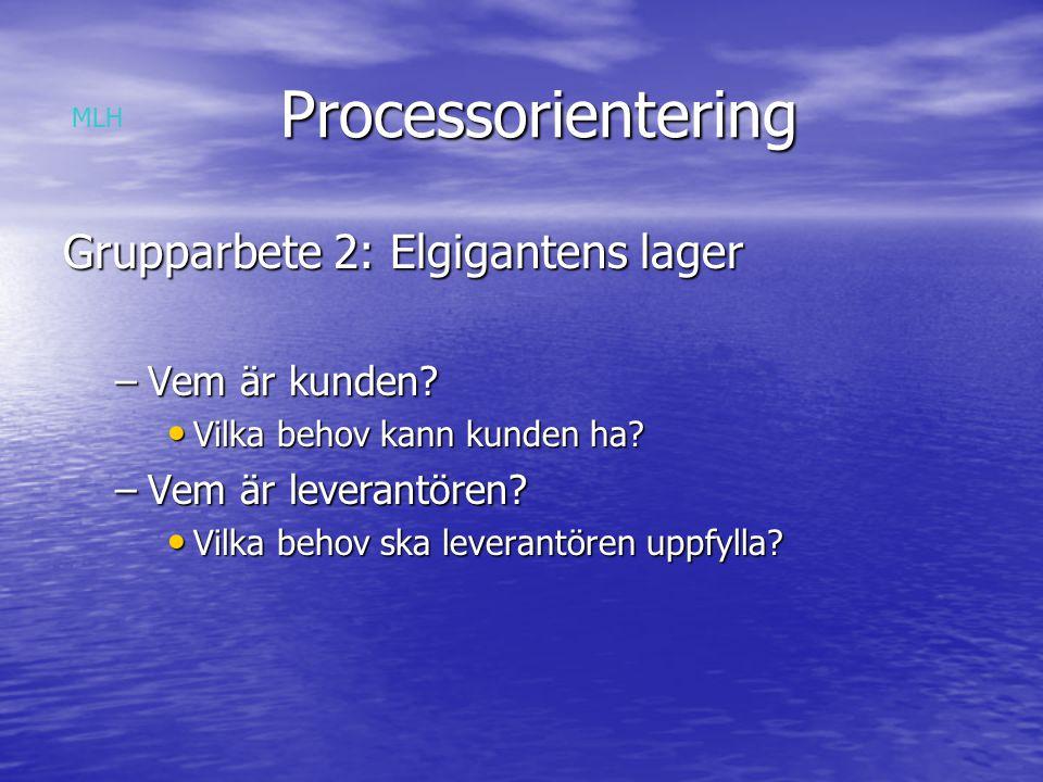 Processorientering Processorientering Grupparbete 2: Elgigantens lager –Vem är kunden.