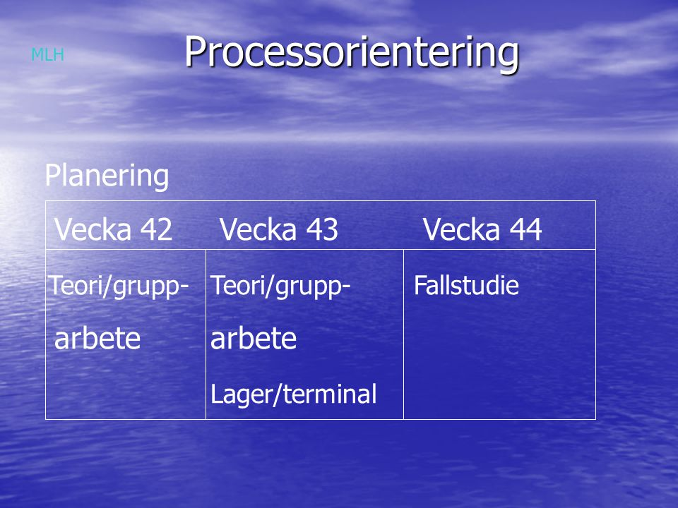 Processorientering Planering Vecka 42 Vecka 43 Vecka 44 Teori/grupp-Teori/grupp-Fallstudie arbetearbete Lager/terminal MLH