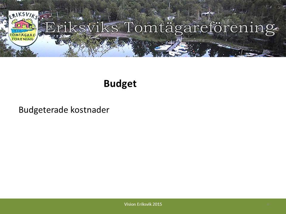 Budgeterade kostnader 4Vision Eriksvik 2015 Budget