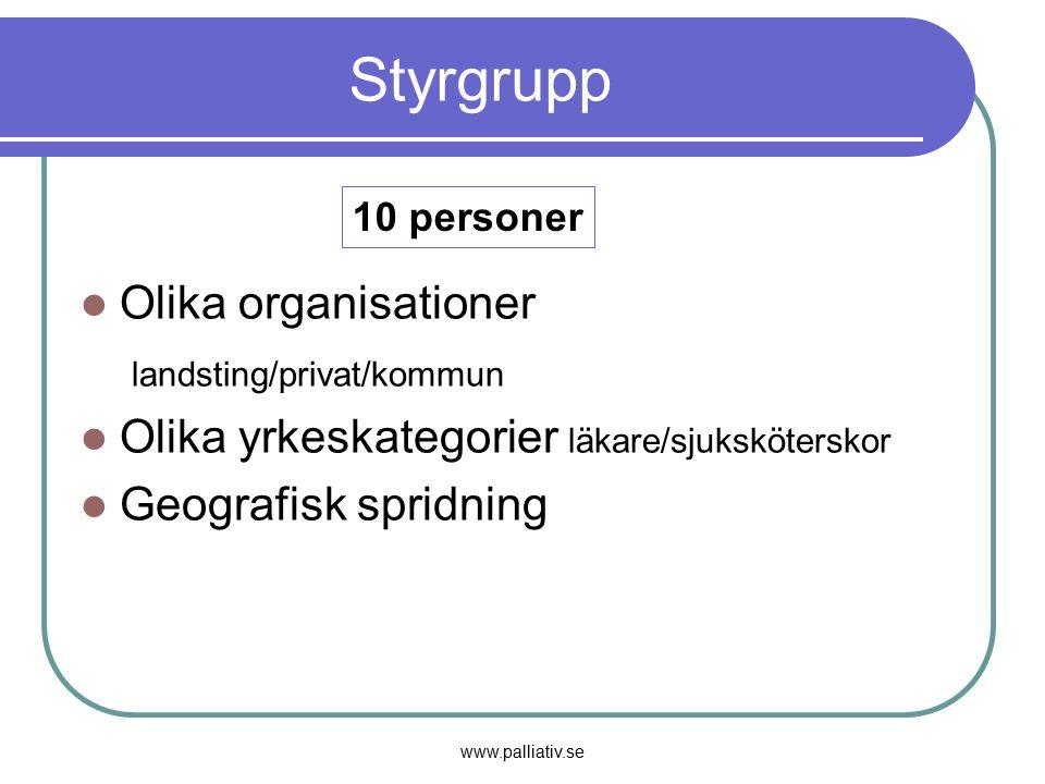 www.palliativ.se Styrgrupp Olika organisationer landsting/privat/kommun Olika yrkeskategorier läkare/sjuksköterskor Geografisk spridning 10 personer