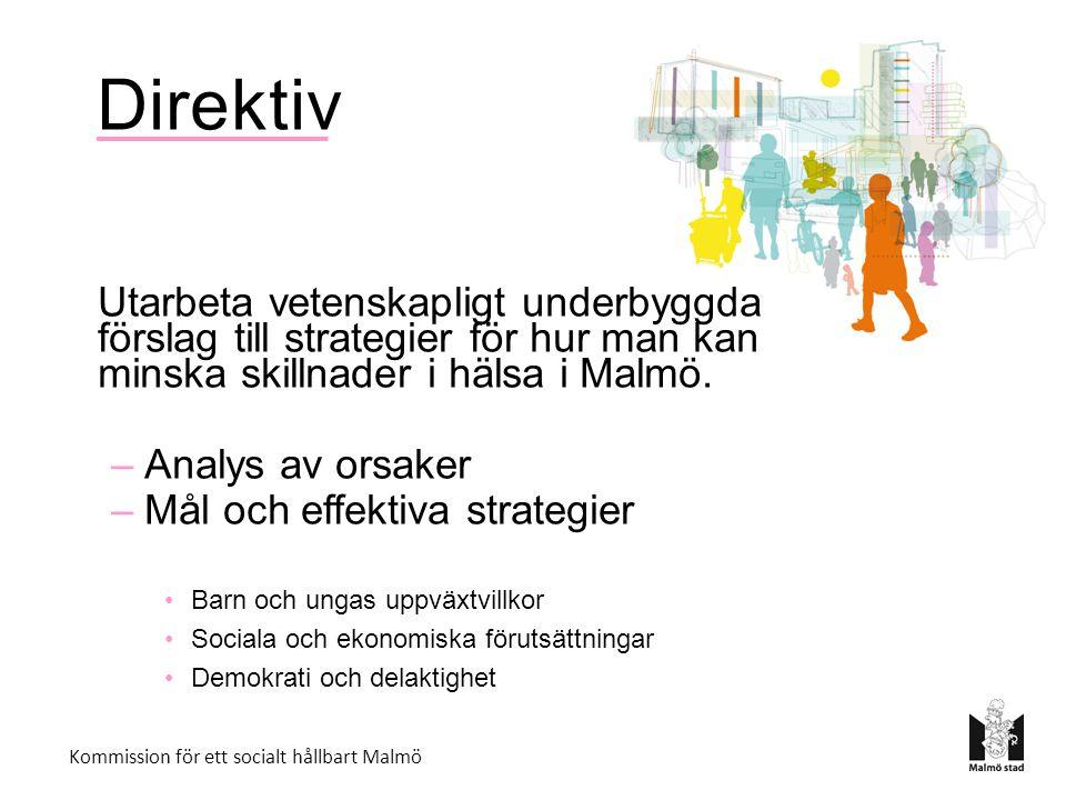 Direktiv Utarbeta vetenskapligt underbyggda förslag till strategier för hur man kan minska skillnader i hälsa i Malmö.