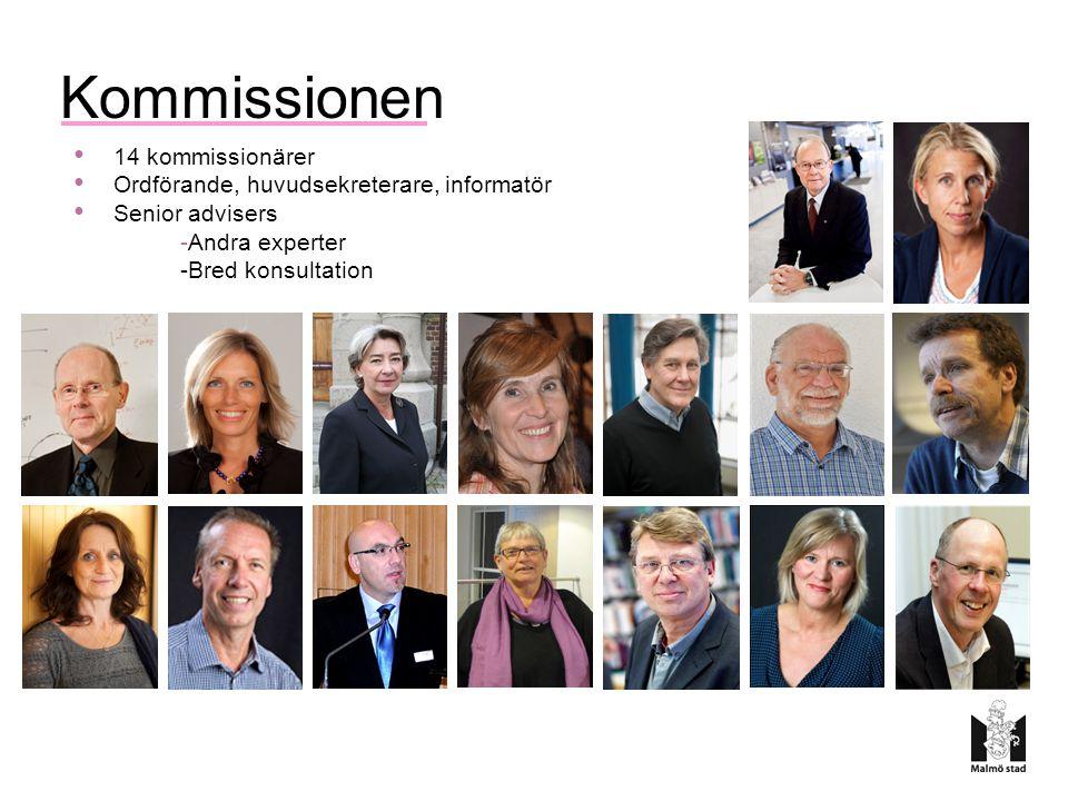 Kommissionen 14 kommissionärer Ordförande, huvudsekreterare, informatör Senior advisers -Andra experter -Bred konsultation