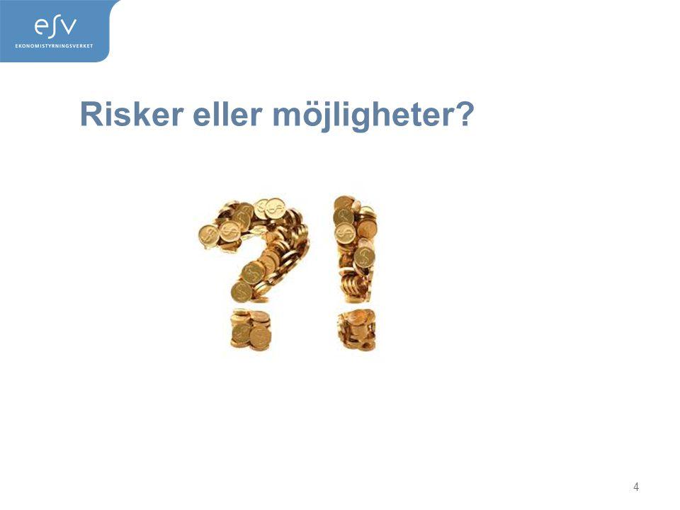 Risker eller möjligheter? 4