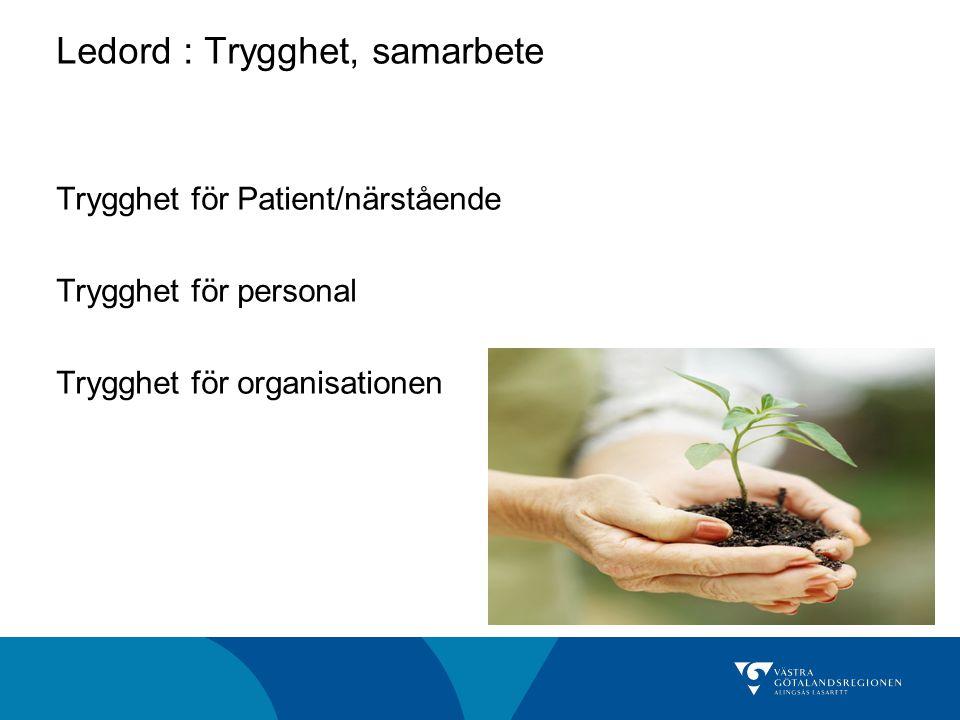 Ledord : Trygghet, samarbete Trygghet för Patient/närstående Trygghet för personal Trygghet för organisationen