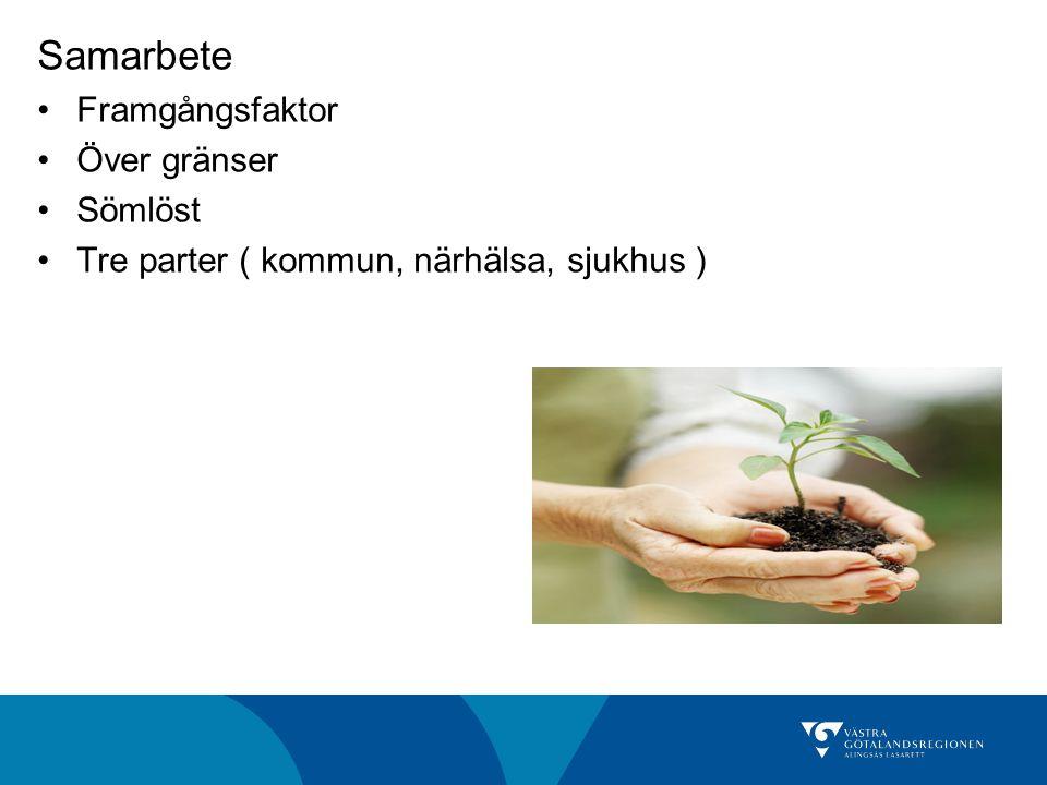 Samarbete Framgångsfaktor Över gränser Sömlöst Tre parter ( kommun, närhälsa, sjukhus )