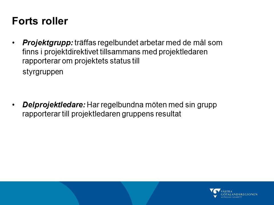 Forts roller Projektgrupp: träffas regelbundet arbetar med de mål som finns i projektdirektivet tillsammans med projektledaren rapporterar om projekte