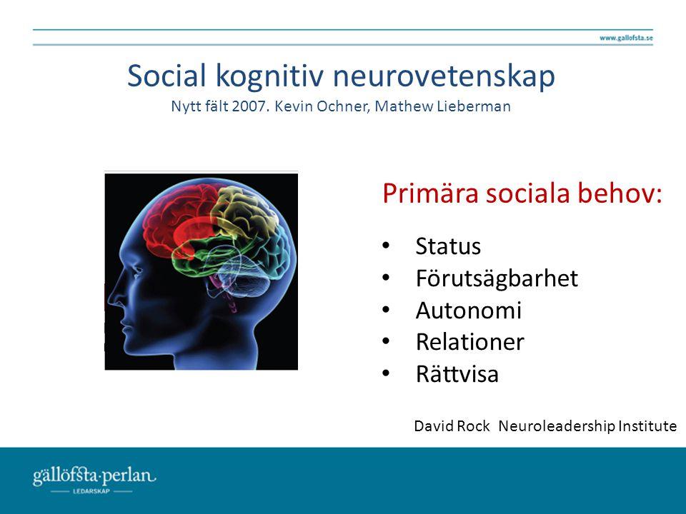 Primära sociala behov: Status Förutsägbarhet Autonomi Relationer Rättvisa Social kognitiv neurovetenskap Nytt fält 2007. Kevin Ochner, Mathew Lieberma