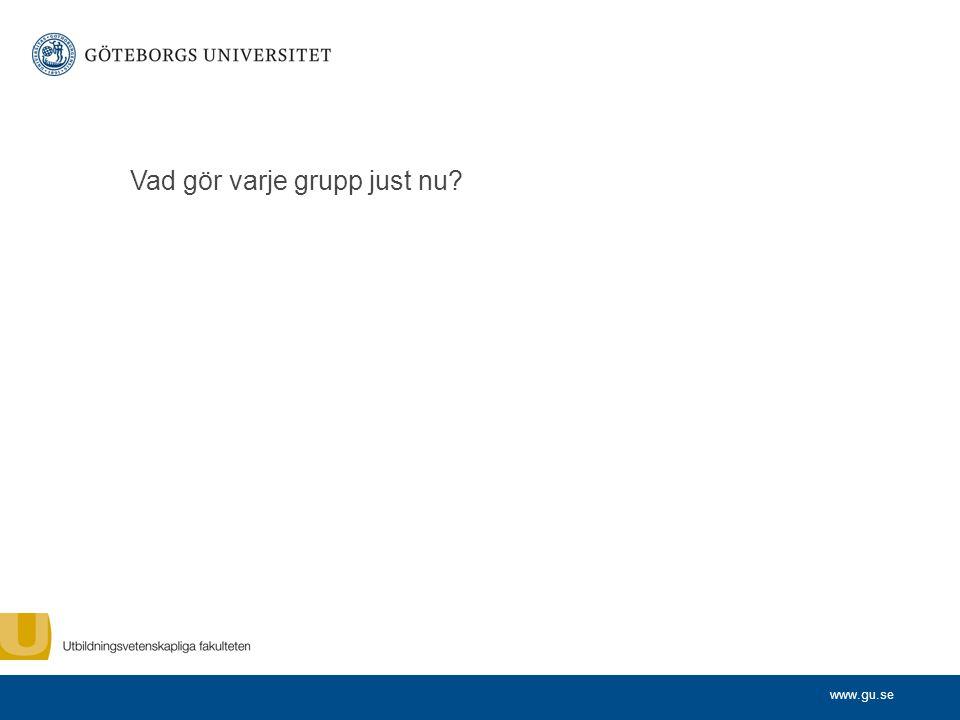 www.gu.se Vad gör varje grupp just nu?