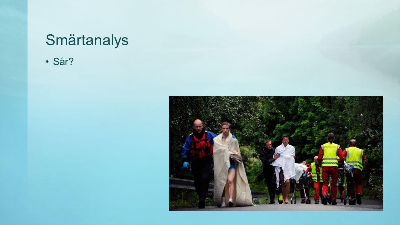 Smärtanalys Noggrann kroppsundersökning Inspektion Palpation Test av funktion