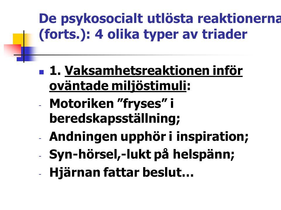 """De psykosocialt utlösta reaktionerna (forts.): 4 olika typer av triader 1. Vaksamhetsreaktionen inför oväntade miljöstimuli: - Motoriken """"fryses"""" i be"""