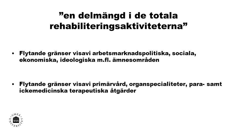 en delmängd i de totala rehabiliteringsaktiviteterna Flytande gränser visavi arbetsmarknadspolitiska, sociala, ekonomiska, ideologiska m.fl.