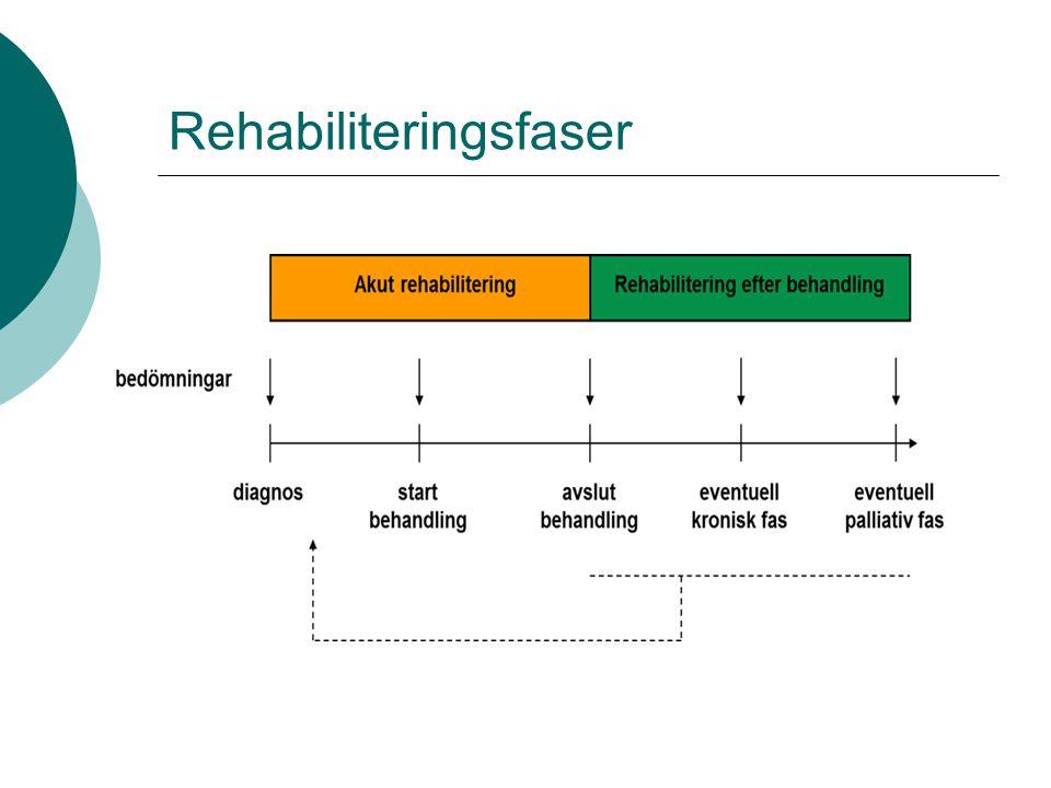 Rehabiliteringsfaser