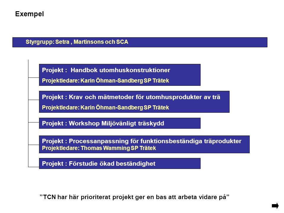 Exempel Projekt : Förstudie ökad beständighet Projekt : Krav och mätmetoder för utomhusprodukter av trä Projektledare: Karin Öhman-Sandberg SP Trätek