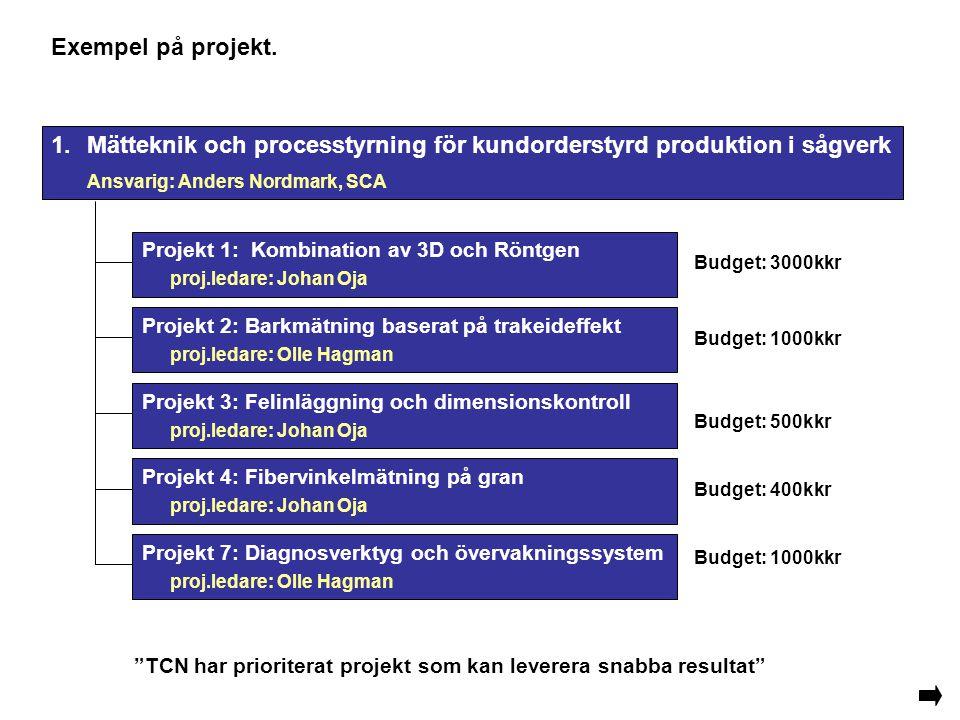 Exempel på projekt. Projekt 7: Diagnosverktyg och övervakningssystem proj.ledare: Olle Hagman Projekt 2: Barkmätning baserat på trakeideffekt proj.led
