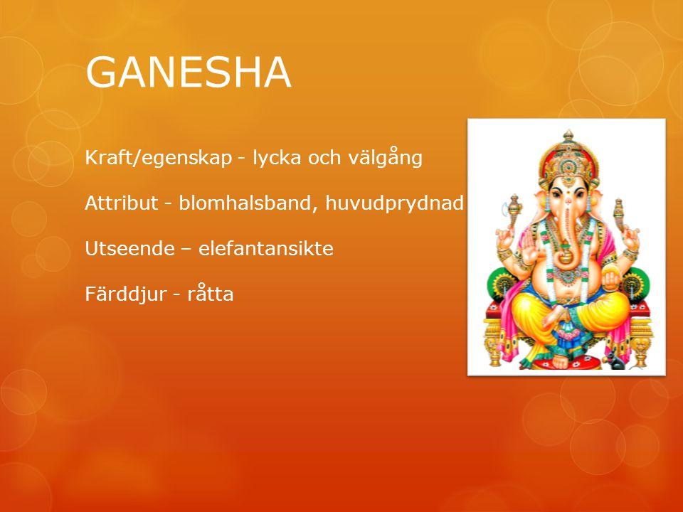 GANESHA Kraft/egenskap - lycka och välgång Attribut - blomhalsband, huvudprydnad Utseende – elefantansikte Färddjur - råtta