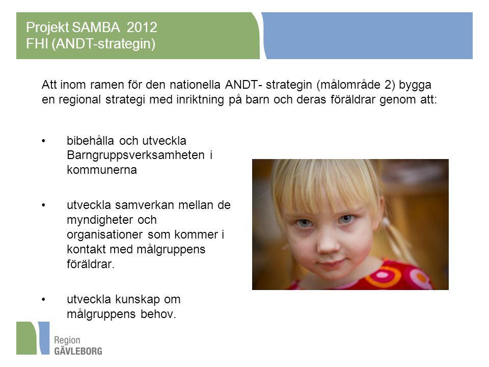 Att inom ramen för den nationella ANDT- strategin (målområde 2) bygga en regional strategi med inriktning på barn och deras föräldrar genom att: bibehålla och utveckla Barngruppsverksamheten i kommunerna utveckla samverkan mellan de myndigheter och organisationer som kommer i kontakt med målgruppens föräldrar.