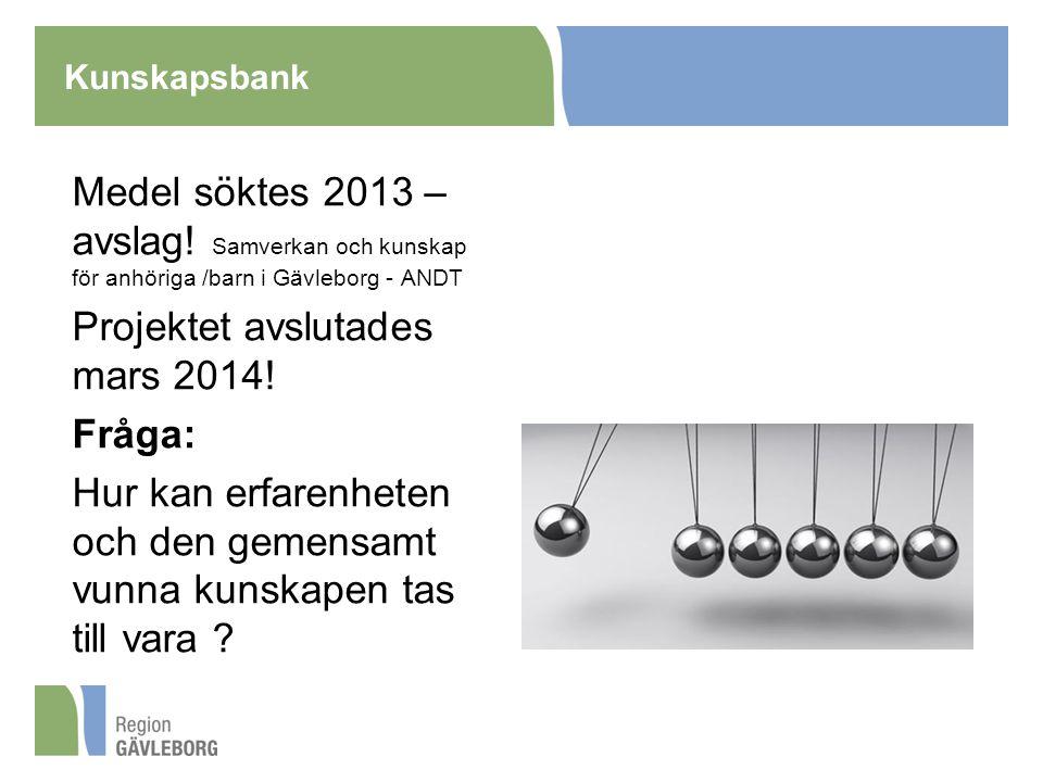 Kunskapsbank Medel söktes 2013 – avslag.