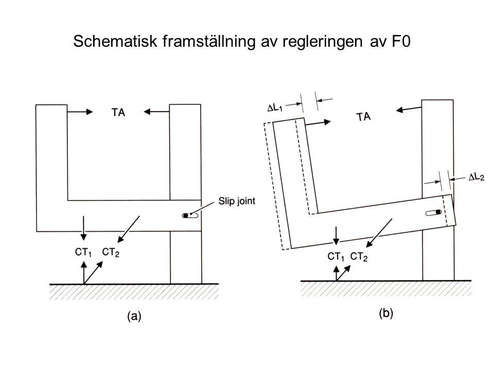 Schematisk framställning av regleringen av F0