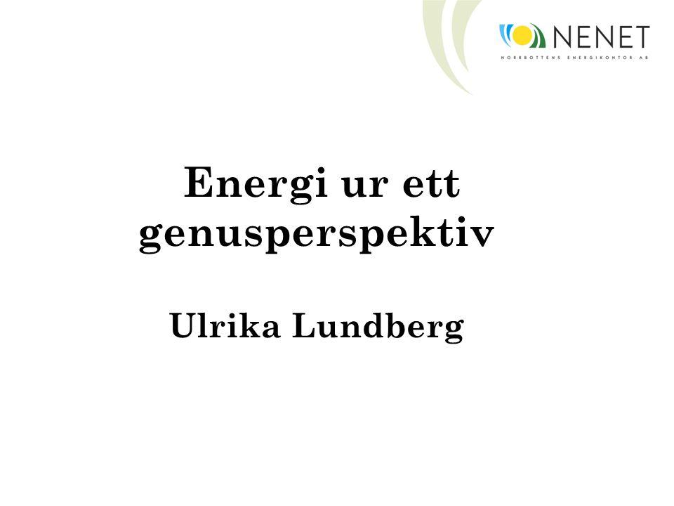 Energi ur ett genusperspektiv Ulrika Lundberg