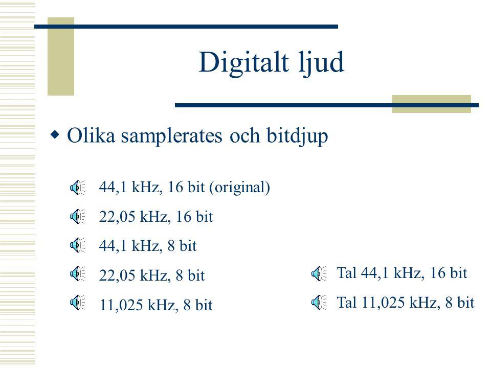 """Digital signal  Signalen blir """"taggig"""" – innehåller extra frekvenser Slätas ut innan den omvandlas till analog signal Ju högre sampel- och bitvärde d"""