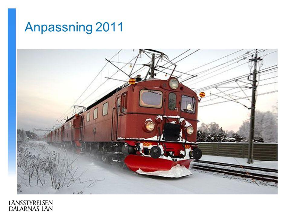 Anpassning 2011