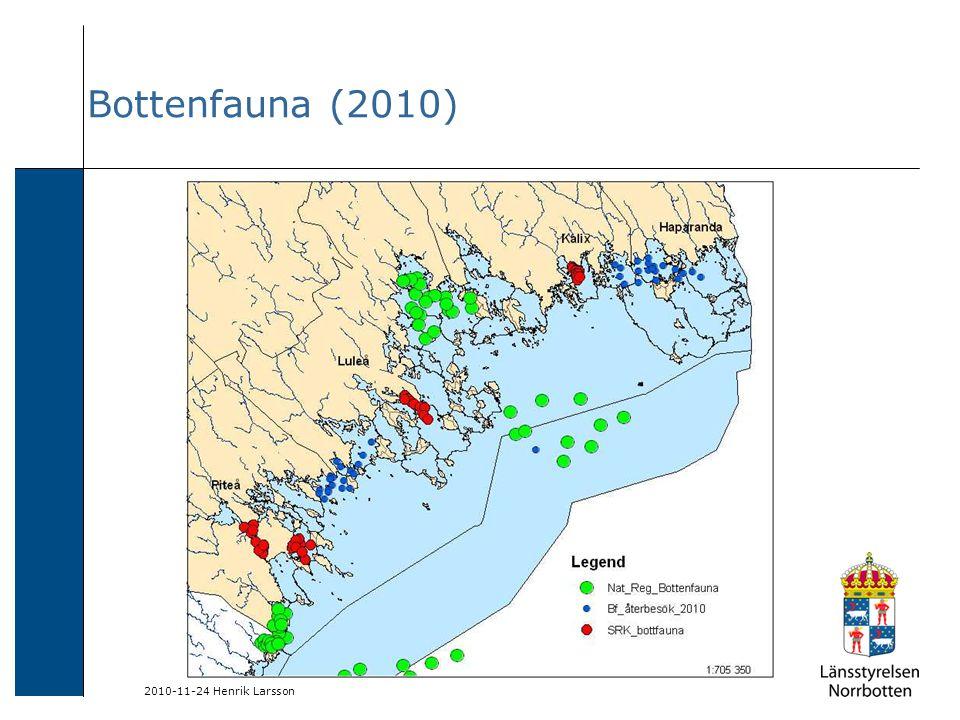 2010-11-24 Henrik Larsson Bottenfauna (2010)