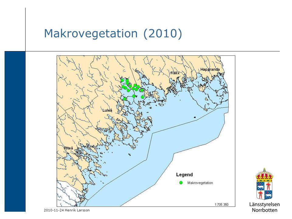 2010-11-24 Henrik Larsson Makrovegetation (2010)