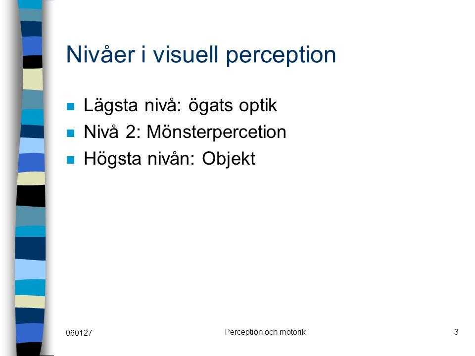 060127 Perception och motorik3 Nivåer i visuell perception Lägsta nivå: ögats optik Nivå 2: Mönsterpercetion Högsta nivån: Objekt