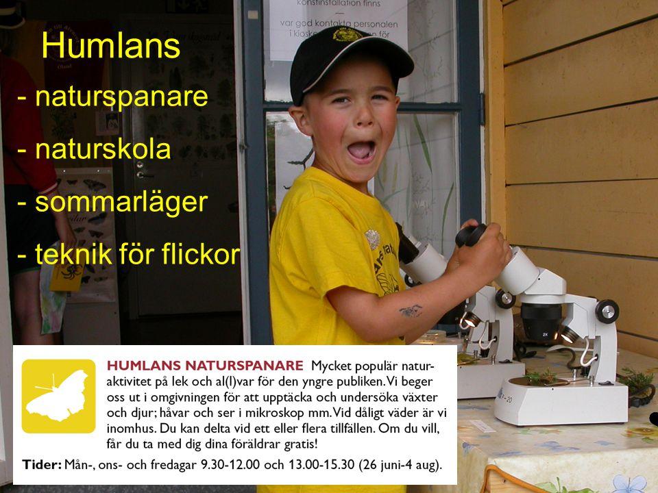 - naturspanare - naturskola - sommarläger - teknik för flickor Humlans