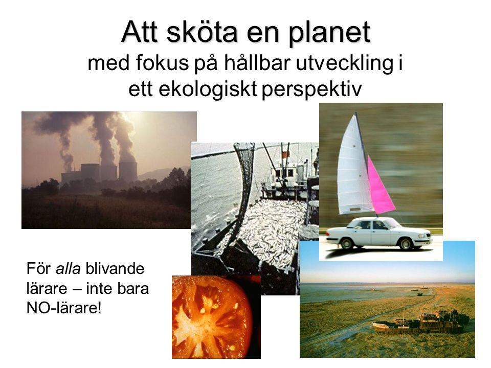 Miljöstörande industrier – skall de ligga i städer, på landsbygden eller utomlands.