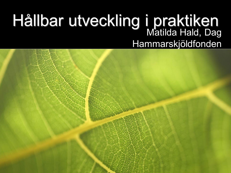 Hållbar utveckling i praktiken Matilda Hald, Dag Hammarskjöldfonden