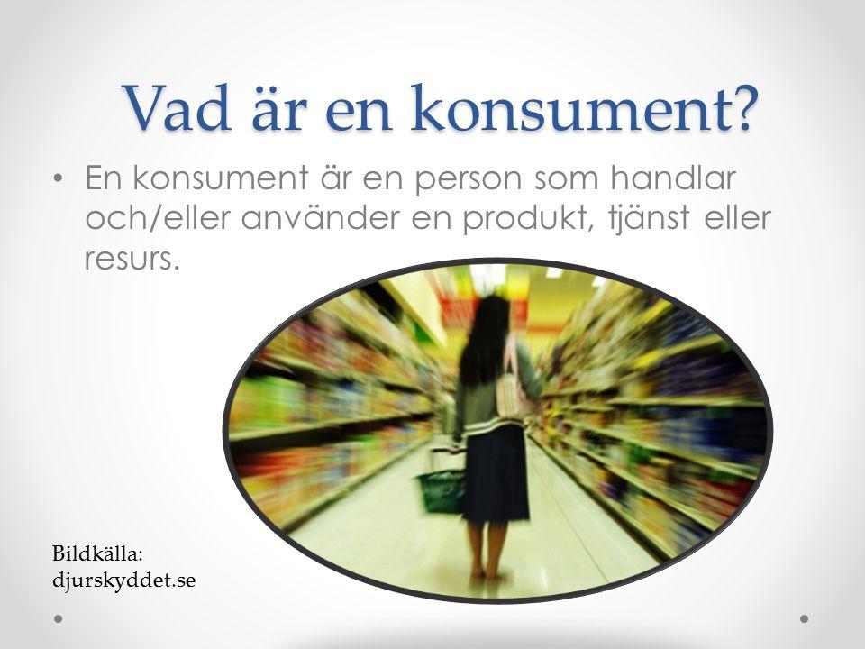 Vad är en konsument? Vad är en konsument? En konsument är en person som handlar och/eller använder en produkt, tjänst eller resurs. Bildkälla: djursky