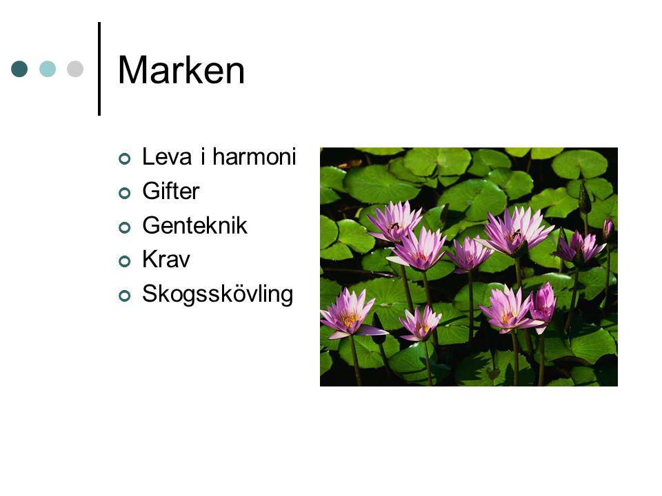 Marken Leva i harmoni Gifter Genteknik Krav Skogsskövling