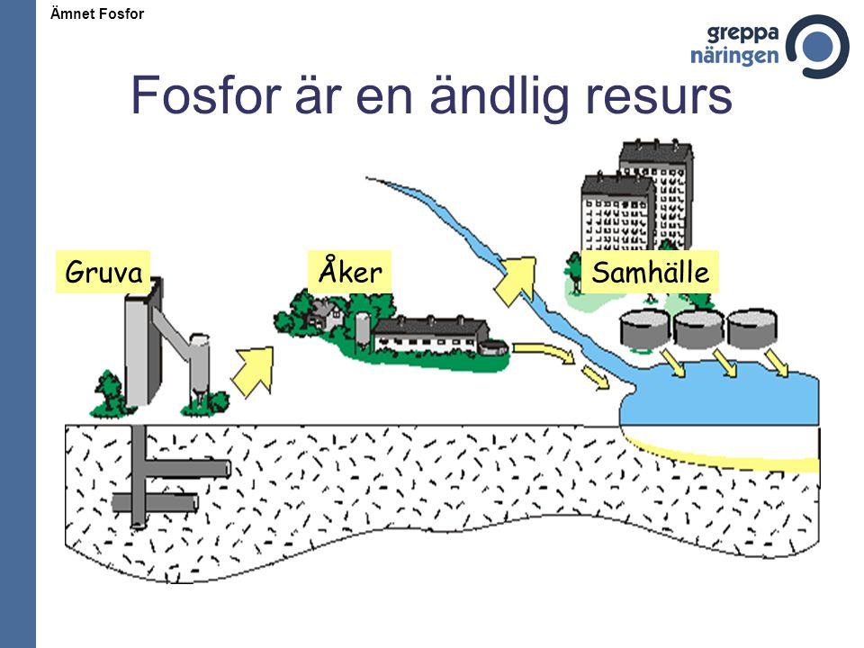 Fosfor är en ändlig resurs GruvaÅkerSamhälle Ämnet Fosfor