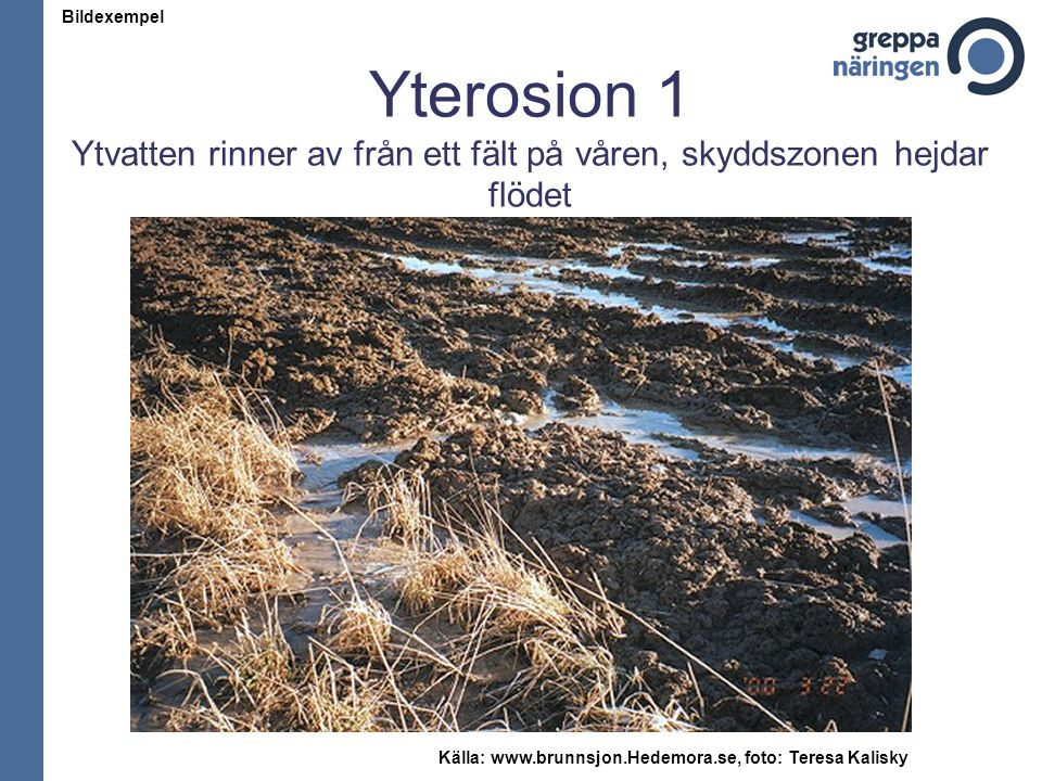 Yterosion 1 Ytvatten rinner av från ett fält på våren, skyddszonen hejdar flödet Källa: www.brunnsjon.Hedemora.se, foto: Teresa Kalisky Bildexempel
