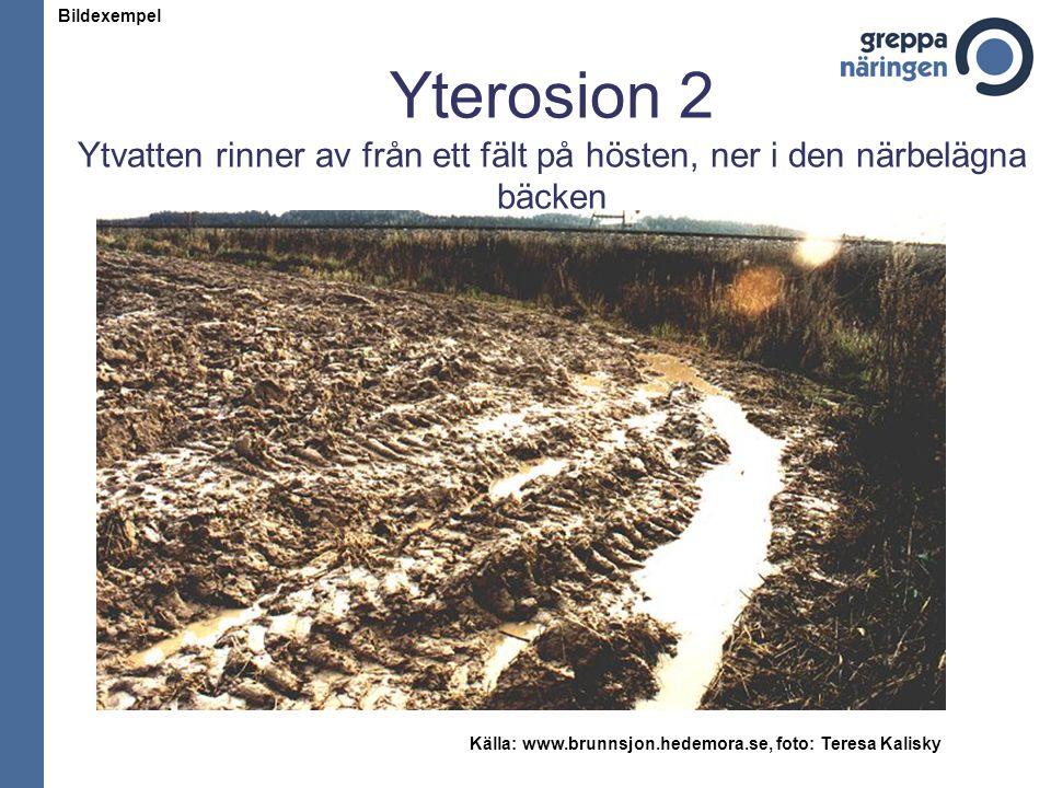 Yterosion 2 Ytvatten rinner av från ett fält på hösten, ner i den närbelägna bäcken Källa: www.brunnsjon.hedemora.se, foto: Teresa Kalisky Bildexempel