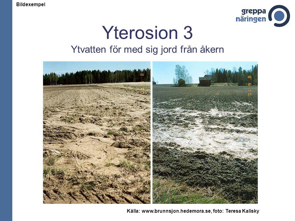 Yterosion 3 Ytvatten för med sig jord från åkern Källa: www.brunnsjon.hedemora.se, foto: Teresa Kalisky Bildexempel