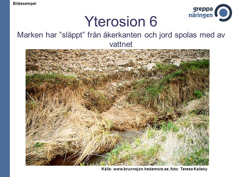 """Yterosion 6 Marken har """"släppt"""" från åkerkanten och jord spolas med av vattnet Källa: www.brunnsjon.hedemora.se, foto: Teresa Kalisky Bildexempel"""