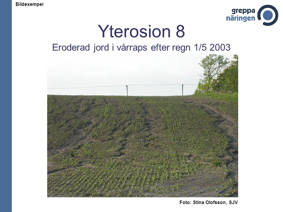 Yterosion 8 Eroderad jord i vårraps efter regn 1/5 2003 Foto: Stina Olofsson, SJV Bildexempel