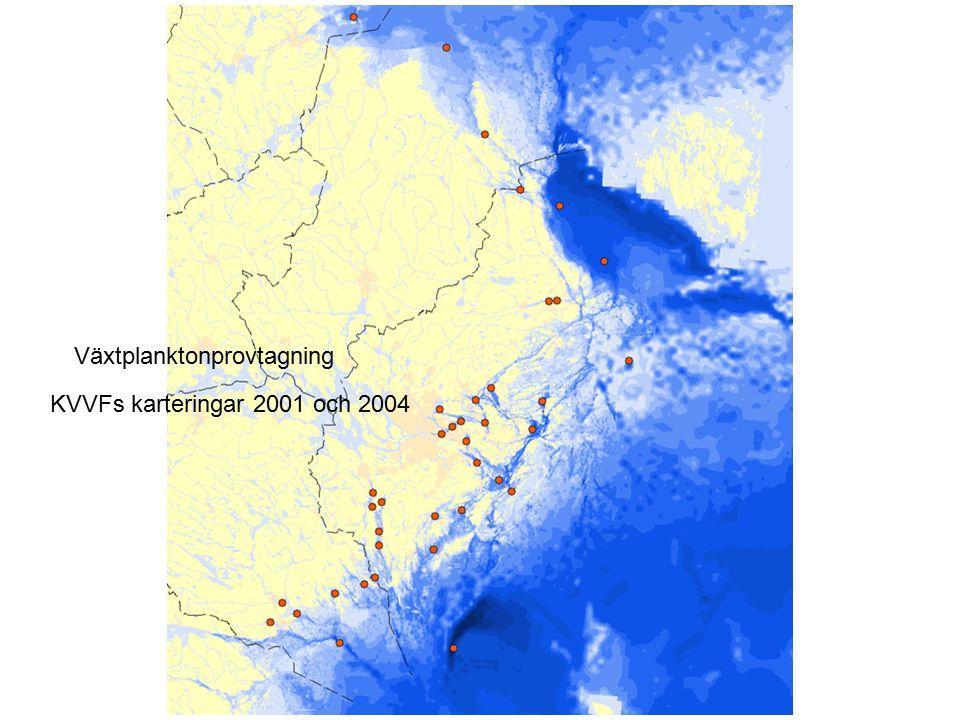 Växtplanktonprovtagning KVVFs karteringar 2001 och 2004