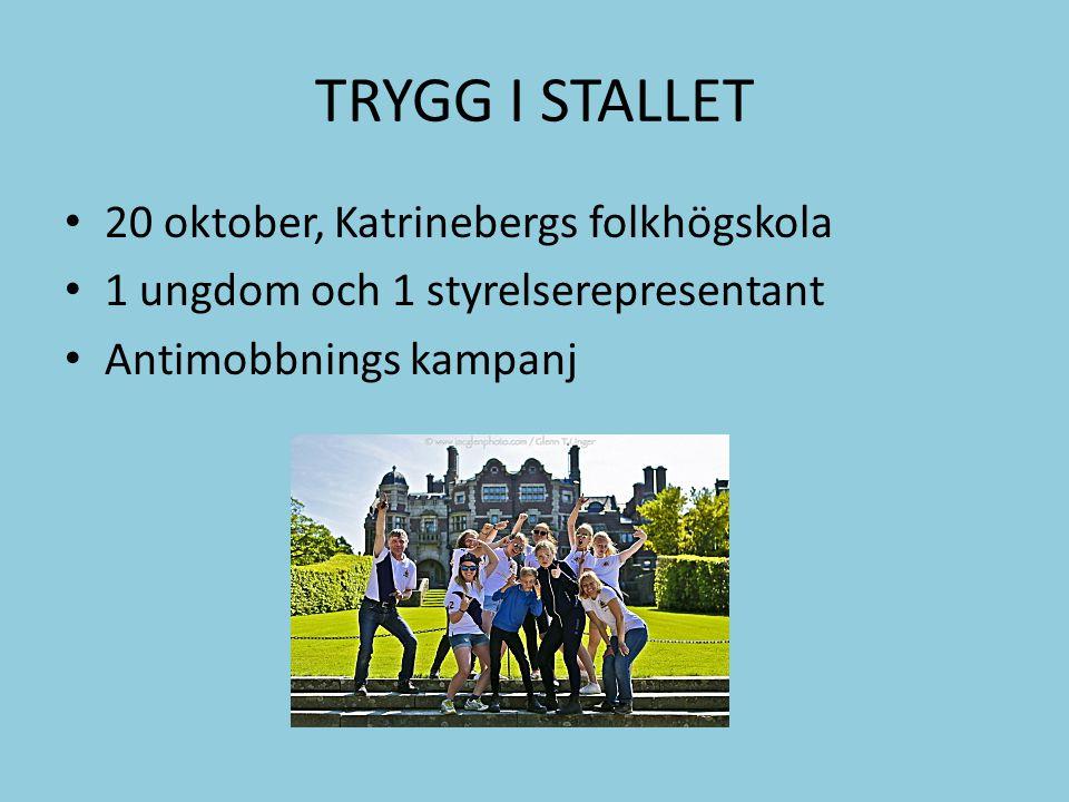 TRYGG I STALLET 20 oktober, Katrinebergs folkhögskola 1 ungdom och 1 styrelserepresentant Antimobbnings kampanj