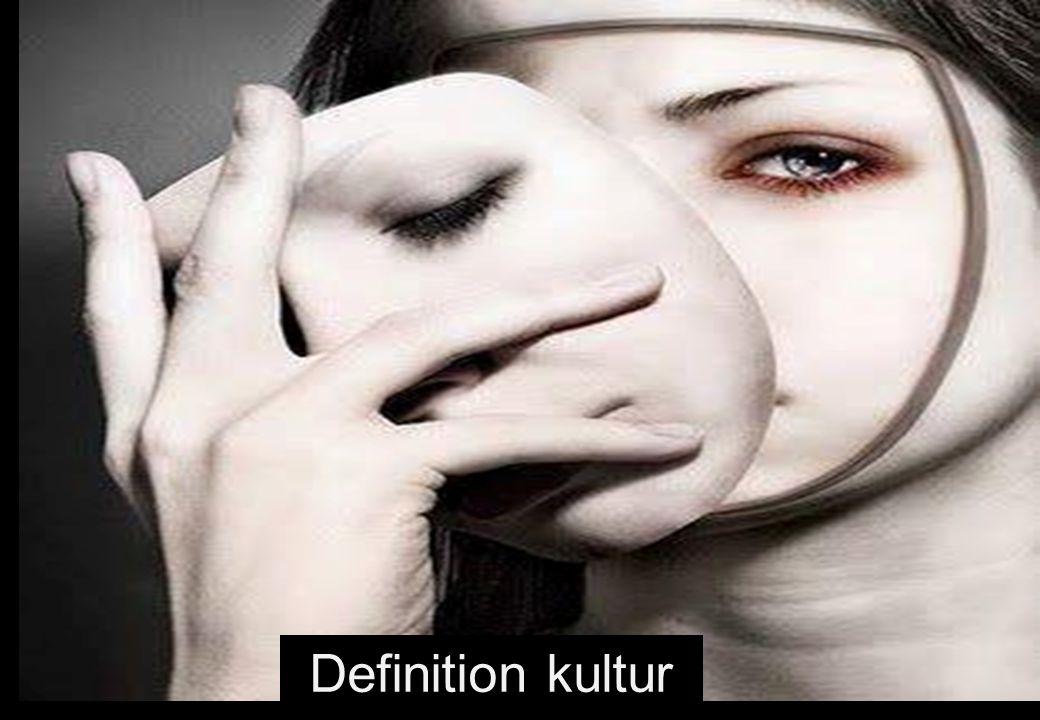 Definition kultur