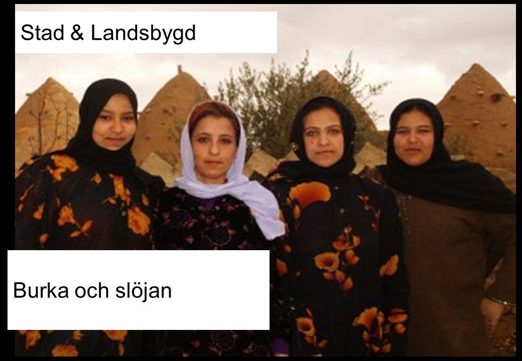 Burka och slöjan Stad & Landsbygd