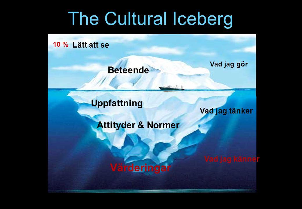 Beteende Attityder & Normer Värderingar Uppfattning Vad jag känner Vad jag tänker Lätt att se The Cultural Iceberg Vad jag gör 10 %