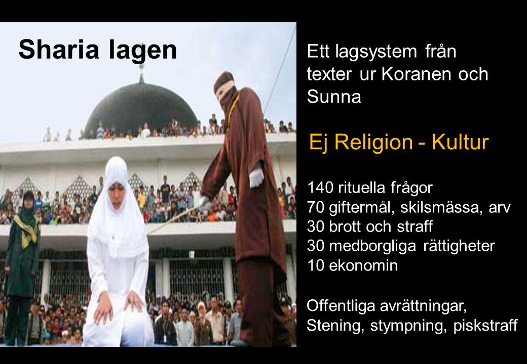 Sharia lagen Ett lagsystem från texter ur Koranen och Sunna 29 140 rituella frågor 70 giftermål, skilsmässa, arv 30 brott och straff 30 medborgliga rä